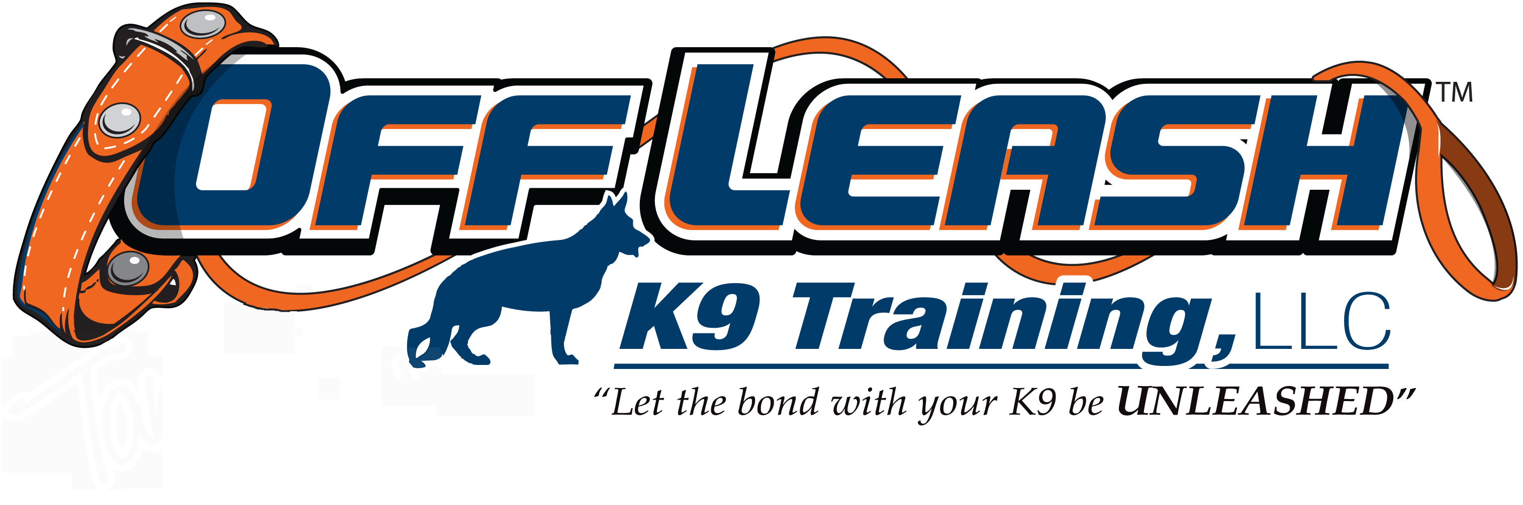 Offleash K9 Dog Training in Laredo Texas